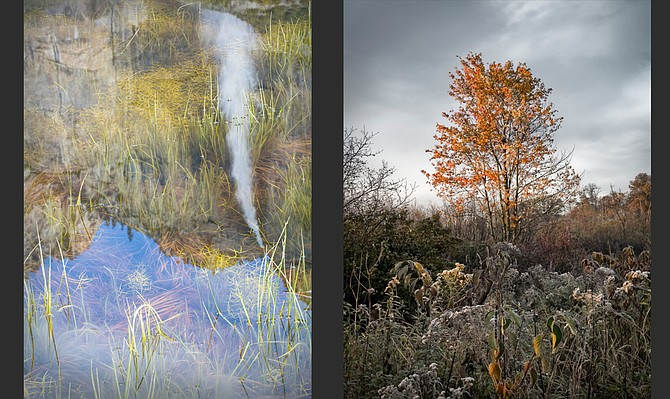 Eleven different artists are featured in this month's Holt-Russell Gallery showing, which displays the abstract beauty of wetlands throughout the United States. The image on the left is by Betsy Litton and the image on the right is by Eric Rennie.